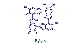 Melatonin,Is,A,Natural,Hormone,Made,By,Your,Body's,Pineal