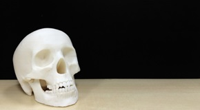 Skull Made by 3D Printer on The Wooden Table at the Left Corner