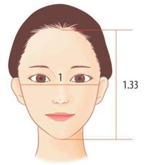 Figure 2. The most ideal ratio of the horizontal and lateral lengths of the face