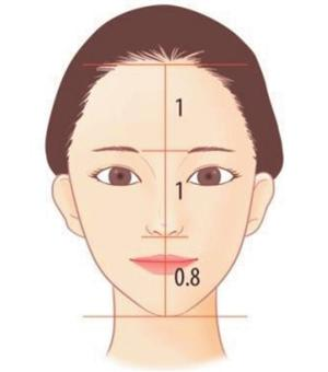 Figure 3. The most ideal ratio of three sections of the face (the front)